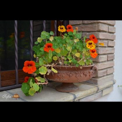 Raised Ø 30 cm in terracotta, Garden furnishings in artistic ceramics of Caltagirone.